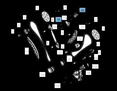 Tendicinghia regolabile per catena di distribuzione